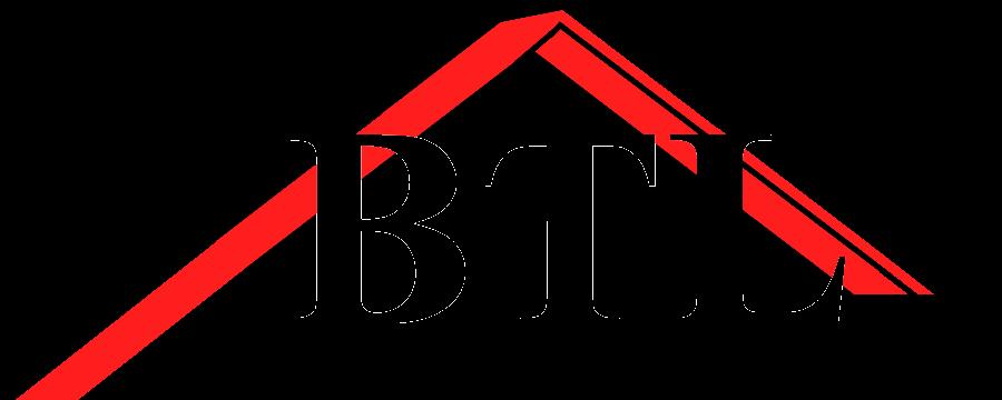 BTL Dachservice